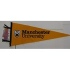 LARGE PENNANT 12 X 30